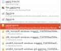 Listary Screenshot 1