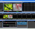 VJDirector2 Ultimate Edition Screenshot 0