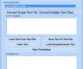English To Hindi and Hindi To English Converter Software Screenshot 0