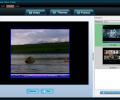 Socusoft Web Video Player Screenshot 0