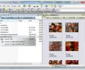 Risingware File Manager Screenshot 0