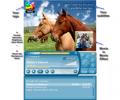 Music Organizer Freeware Ultimate Screenshot 0