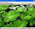 uToolbox Image Viewer Tool Screenshot 0