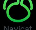 Navicat for MySQL (Windows) - superb database tool for MySQL and MariaDB Screenshot 0