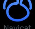 Navicat for PostgreSQL (Windows) - the best GUI database administration tool Screenshot 0