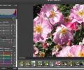 ACDSee Mac Pro Screenshot 0