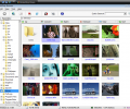 Smart Mate for DV and DVB Screenshot 0