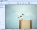 Free File Opener Screenshot 0