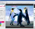 Hornil StylePix Pro Screenshot 5