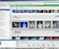 Google Picasa for Linux Screenshot 0
