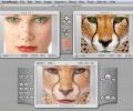 Abrosoft FantaMorph Pro for Mac Screenshot 0