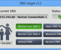 Dns Angel Screenshot 0