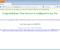 Tor Browser Screenshot 9