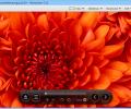 Honeyview Image Viewer Screenshot 1