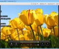Honeyview Image Viewer Screenshot 4