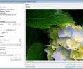 Honeyview Image Viewer Screenshot 5
