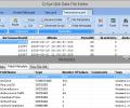 Q-Eye QVD/QVX files Editor (32 Bit) Screenshot 0