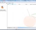 Clementine Screenshot 1